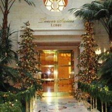 Two of our Silvertip\'s Beautifully Decorated at the Fabulous Wynn Casino